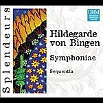 Sequentia Dhm Splendeurs: Bingen: Symphoniae