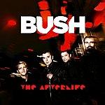 Bush The Afterlife (Radio Edit)