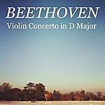 Constantin Silvestri Beethoven - Violin Concerto In D Major, Op. 61