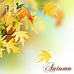 Liquid Blue Autumn: Relax Your Mind With Relaxation Music