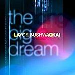 Layo & Bushwacka! The Big Dream