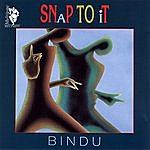 Bindu Snap To It
