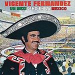 Vicente Fernández Un Mexicano En La México
