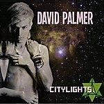 David Palmer City Lights