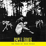 Paper Route The Peace Of Wild Things
