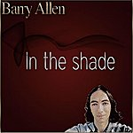 Barry Allen In The Shade