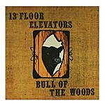 The 13th Floor Elevators Bull Of The Woods