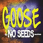 Goose The No Seeds Sessions