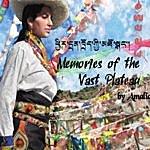 Amalia Memories Of The Vast Plateau