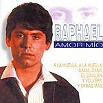 Raphael Amor Mío