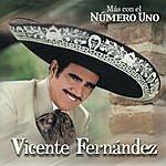 Vicente Fernández Más Con El Número Uno