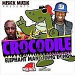 Elephant Man Crocodile - Single