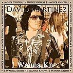 David Martinez I Wanna Know