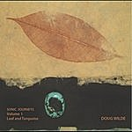 Doug Wilde Sonic Journeys, Vol. 1 (Leaf And Turquoise)