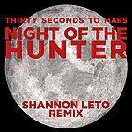 Thirty Seconds To Mars Night Of The Hunter (Shannon Leto Remix)