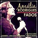Amália Rodrigues Fados. Amália Rodrigues