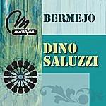 Dino Saluzzi Bermejo