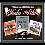Chelo Silva Tesoros De Colección - Chelo Silva, Vol. 1