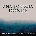 Ana Torroja Donde