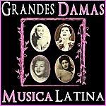 Celia Cruz Grandes Damas. Música Latina
