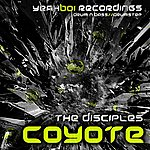 The Disciples Coyote