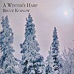 Bruce Kurnow A Winter's Harp