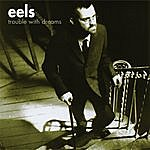 Eels Trouble With Dreams