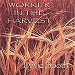 David Booth Worker In The Harvest