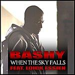 Bashy When The Sky Falls