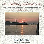 Ingrid Matthews The Music Of Andrea Falconieri