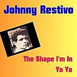 Johnny Restivo The Shape I'm In