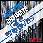 Todd Terry Todd Terry's Ultimate Rare Grooves (Part 2)