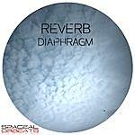 Reverb Diaphragm