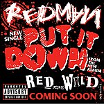 Redman Put It Down (Album Version (Explicit))
