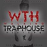 C Walking Trap House