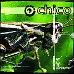 Chico One Big Alternative