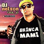 DJ Nelson Brinca Mami (Feat. Jd)