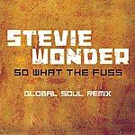 Stevie Wonder So What The Fuss-Global Soul Remix