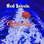 Ned Benvin Cvijet U Boci (Flower In A Bottle)
