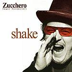 Zucchero Shake (New Italian Version)