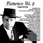 Pepe Pinto Flamenco Vol. 8