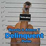 Boosta Delinquent / Pulse
