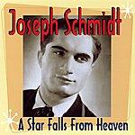 Joseph Schmidt A Star Falls From Heaven