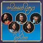 The Beach Boys 15 Big Ones