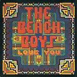 The Beach Boys Love You