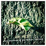 Ari Hest What Becomes Of The Broken Hearted