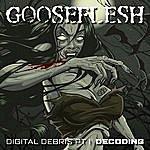 Gooseflesh Digital Debris, Pt. I (Decoding)