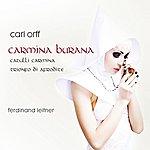 Ferdinand Leitner Orff: Carmina Burana - Catulli Carmina / Trionfo Di Afrodite