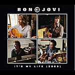 Bon Jovi It's My Life (Int'l 4 Trk)