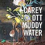Carey Ott Muddywater